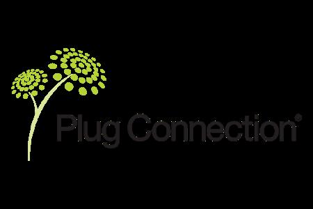 Plug Connection